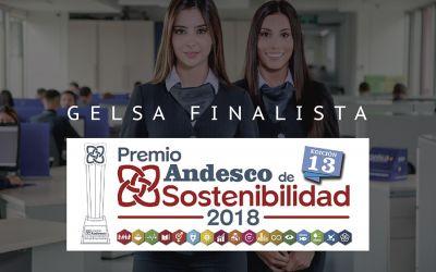 GELSA, FINALISTA EN EL PREMIO ANDESCO DE SOSTENIBILIDAD 2018  POR MEJOR ENTORNO LABORAL